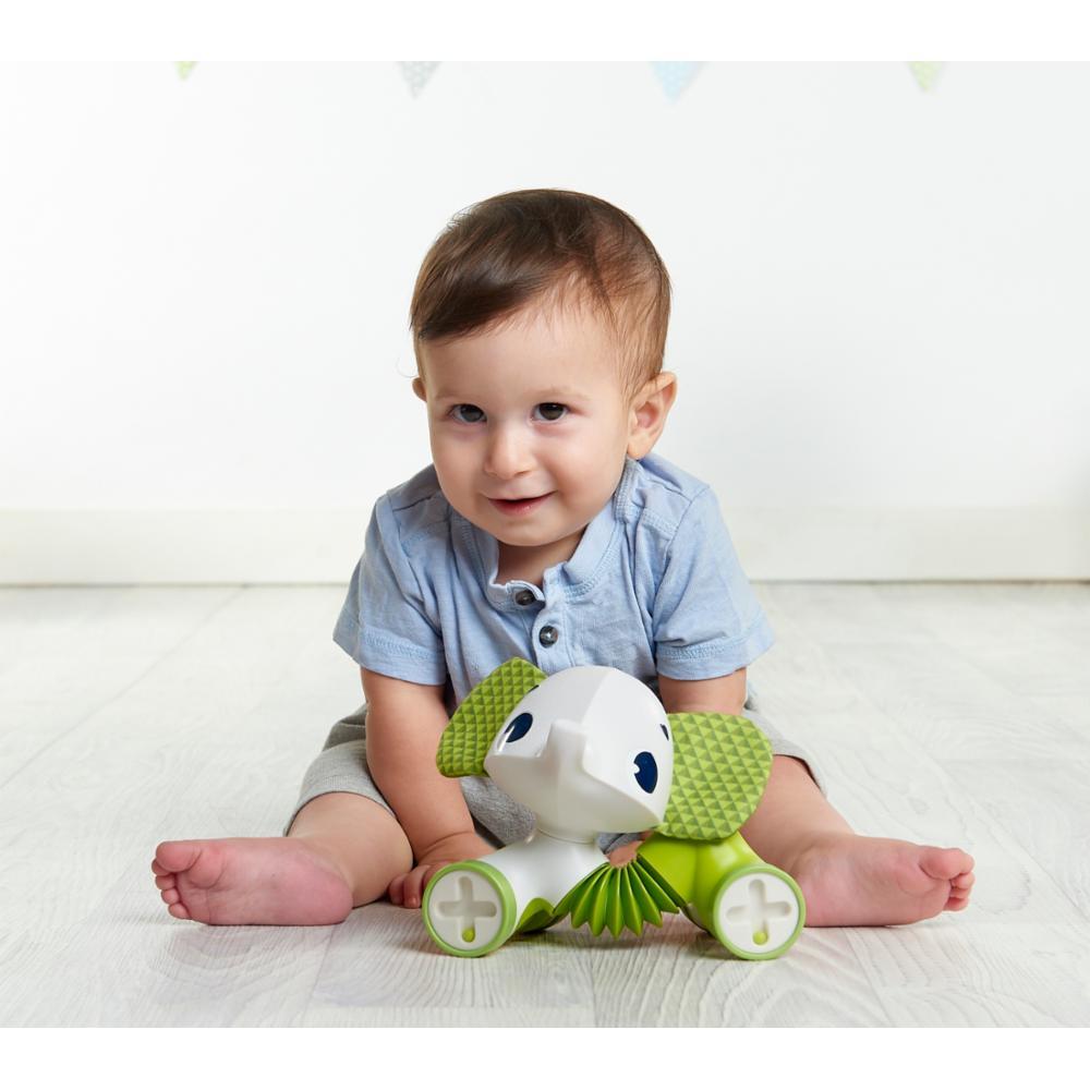 Tiny Love Rolling Toys Samuel Fantti
